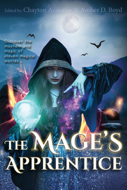 The Mage's Apprentice